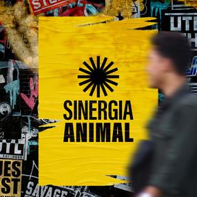 Sinergia Animal luncurkan identitas visual baru
