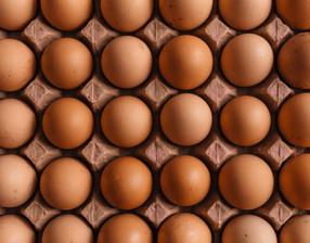 9 motivos por los que no deberíamos comer huevos