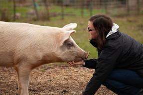 ¿Sabes cuál es la diferencia entre veganos y vegetarianos?