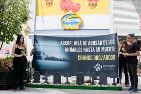 Activistas exponen 'El Cementerio de Arcor' para terminar con las peores prácticas en la industria d
