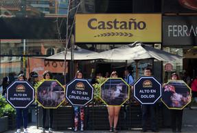 Activistas piden fin de maltratos en la industria del huevo