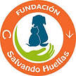 fundacioon.png