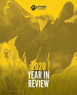 cover report 2020.jpg