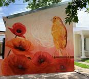 Mural Amapola Nawá Pedro Vayu Gallinger
