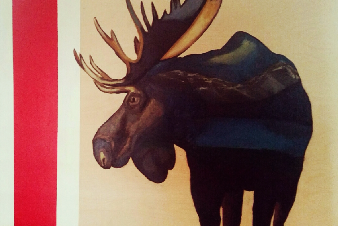 Landscape within a Moose