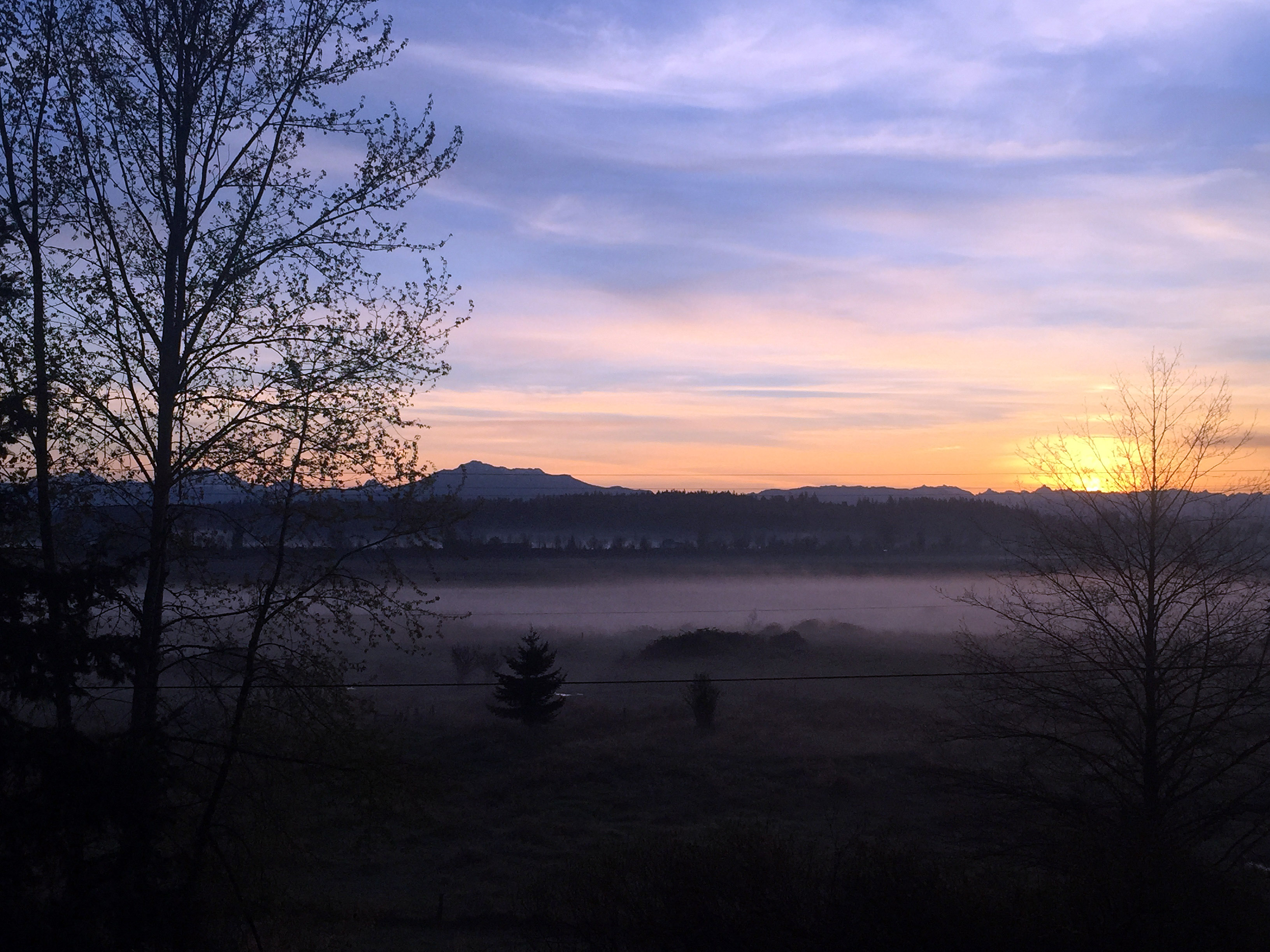 Sunrise front