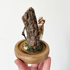 Mantis Mini Dome.JPG