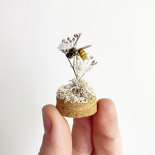 Wasp Mini Dome