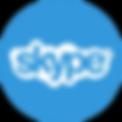 Skype icon.jpg