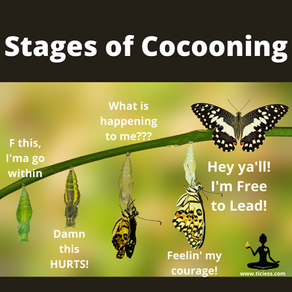 Cocoons Are For ALL Of Us!