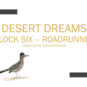 Desert Dreams Digitizing Class - Block Six Roadrunner