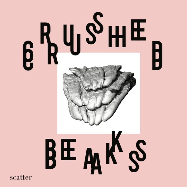 Crushed Beaks Melts Together Genres and Lyricism For a True Indie Pop Rock Feeling
