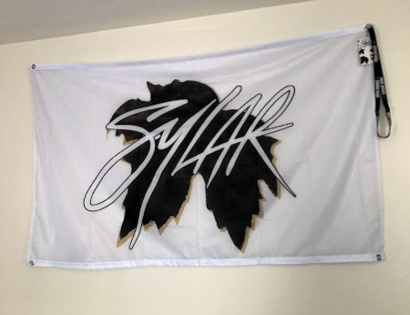 Sylar at the Beat Kitchen in Chicago