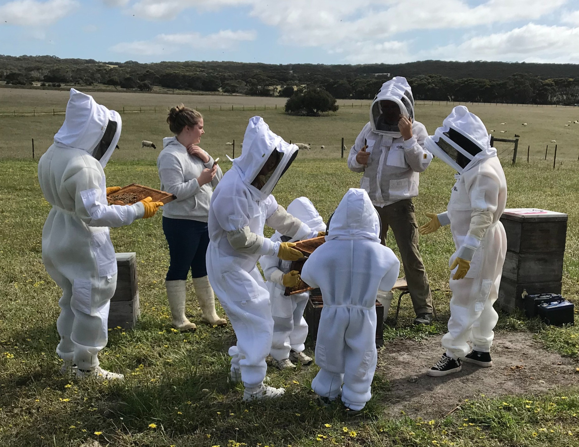 Beekeeping Experience - PUBLIC GROUP