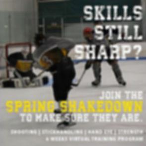 Shakedown_InstaPost1_edited.jpg