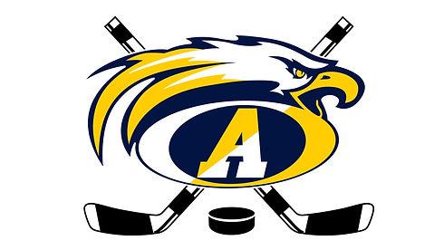 AHA Logo_edited.jpg