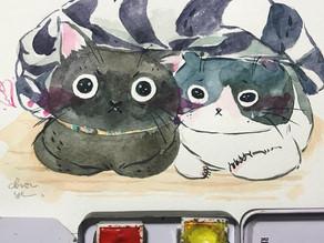 怎麼找適合的貓旅館- Hapet好寵 貓森旅住宿經驗