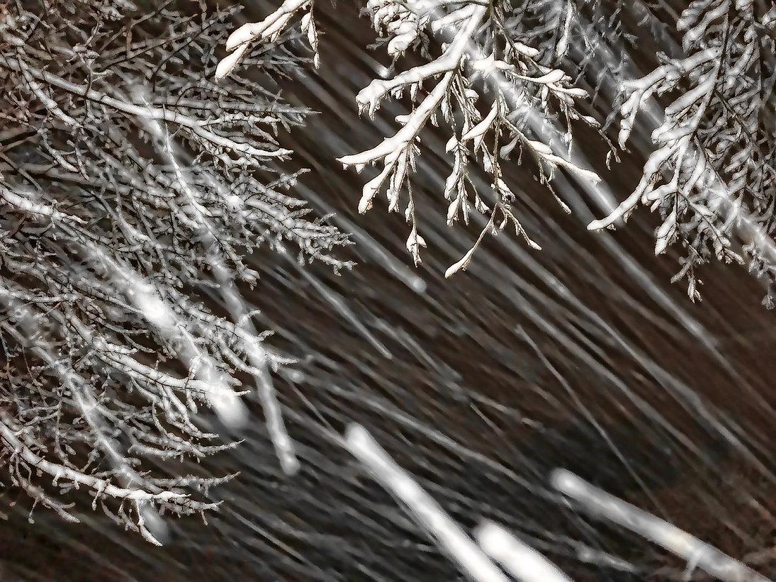 Snow 8 Bill Crofton c.jpg