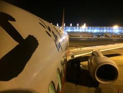関西空港KIX~中国・上海国際空港PVGのハンドキャリー