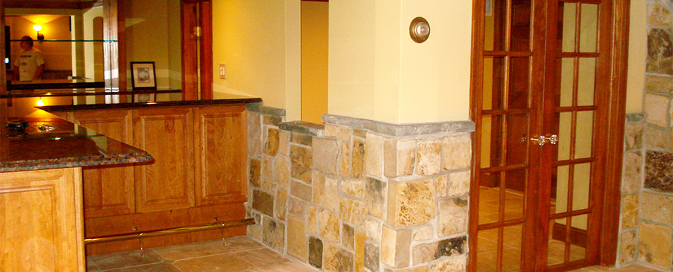Basement Remodel/Renovation