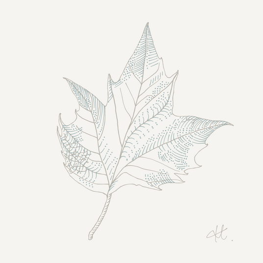 Paper.Design.19.png