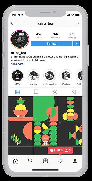srina instagram mockup