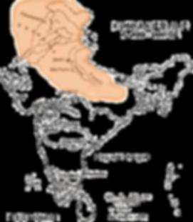 Kushan-Empire.png