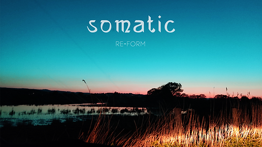 Somatic Re-form Youtube cover.png