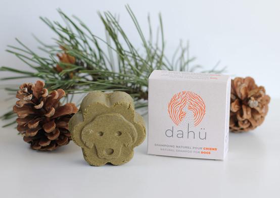 Logo Dahü