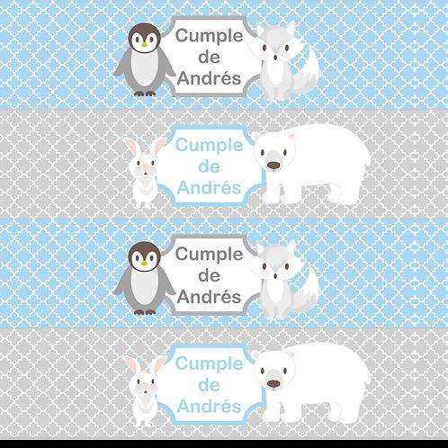 Fiesta cumpleaños animales polares