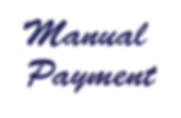 Manual Payment.png