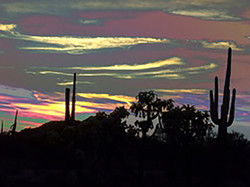 Arizona_Nocturne