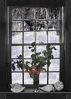 5_Plla_Dorothy_Amore_Winters_Window.jpg