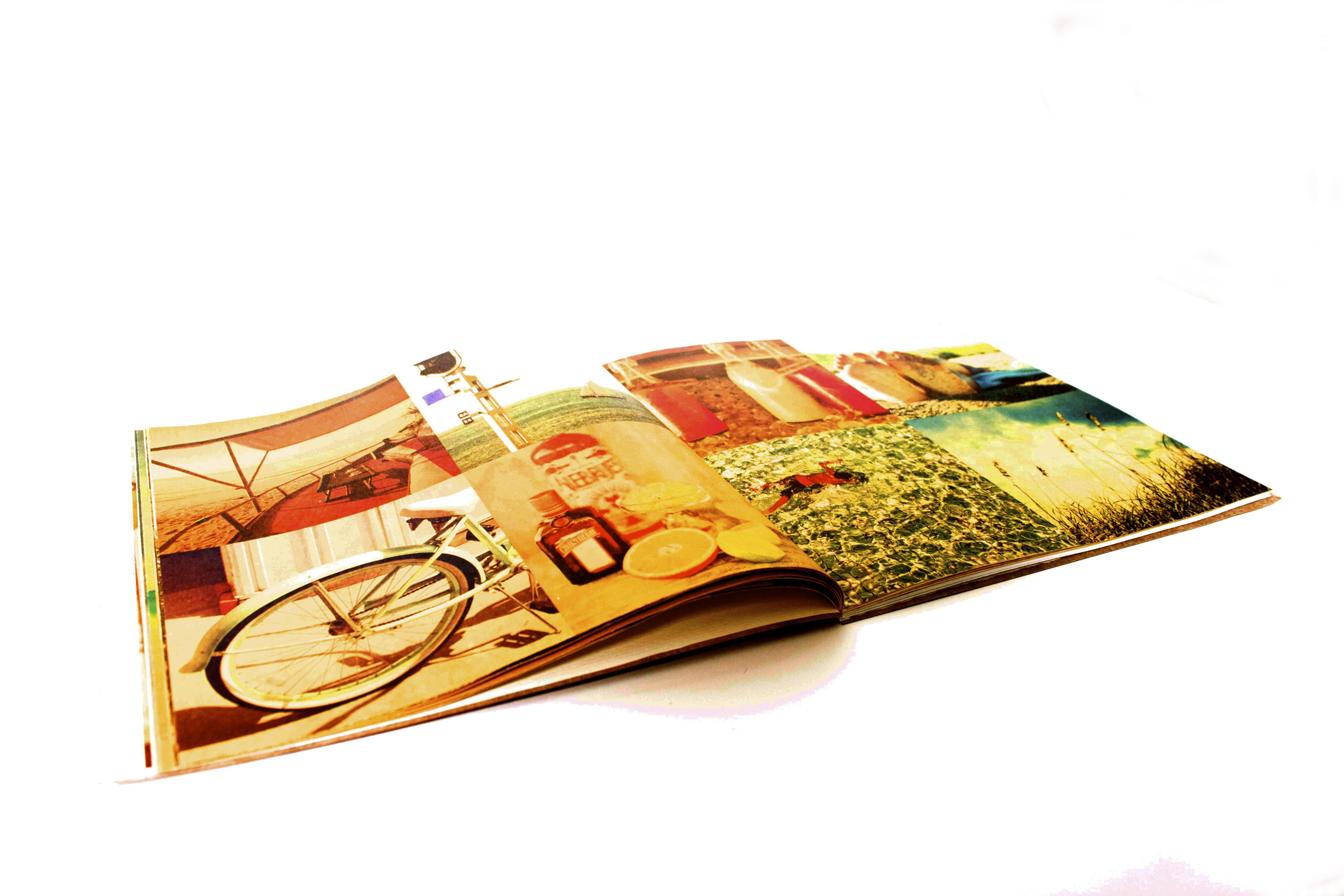 Verde Brand Book