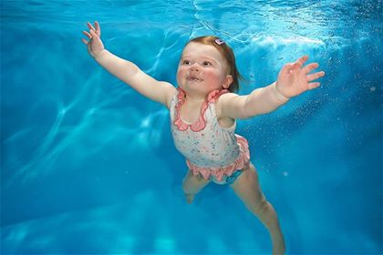 Starfish underwater photo