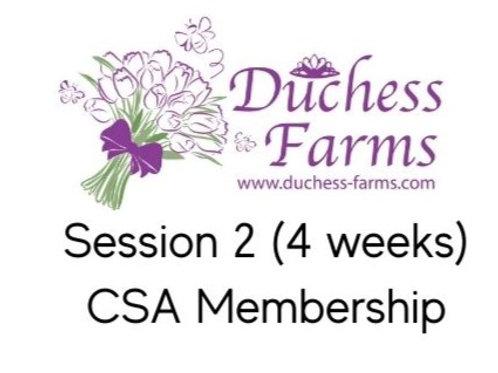 2021 CSA Session2