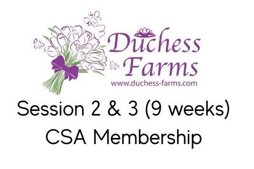 CSA Membership Session 2 &3
