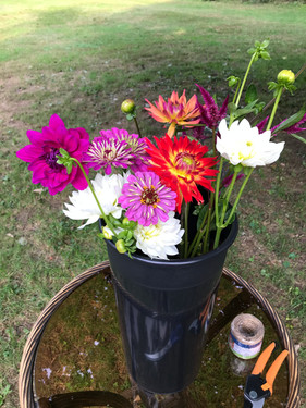 Flowers Headed to Market