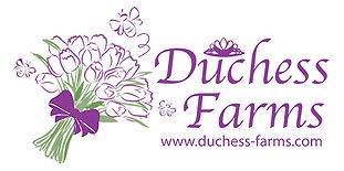 DuchessFarms-logo-med.jpg