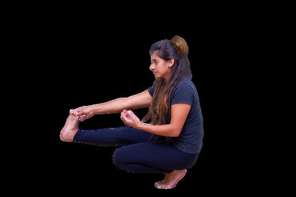 aluna shaiva yoga.