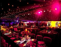 starlight ceiling.jpg