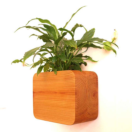floating cedar planter