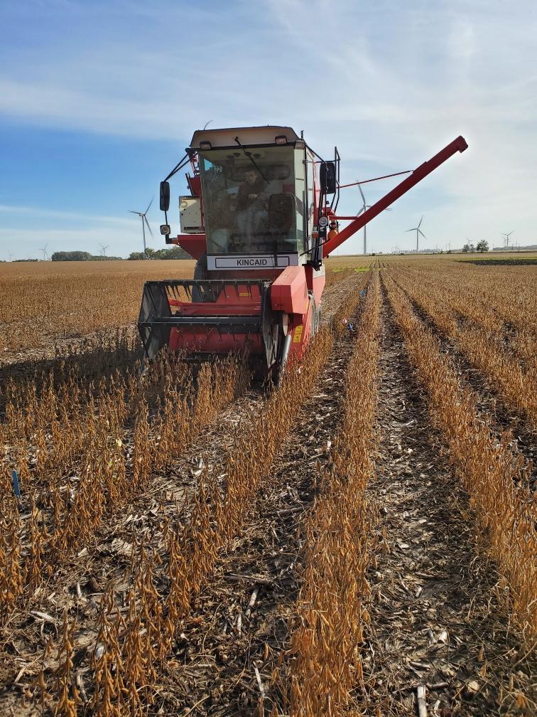 2019 soy harvest.jpeg
