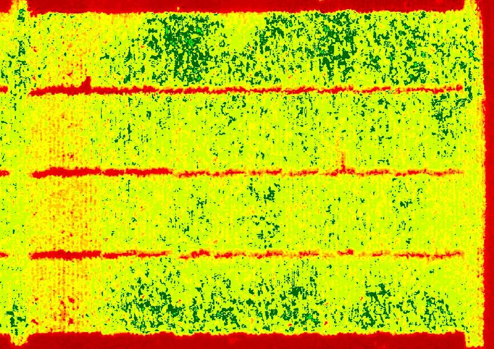 GeneratedNDVI (2).jpg