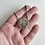 Thumbnail: Petoskey Stone Shield Necklace
