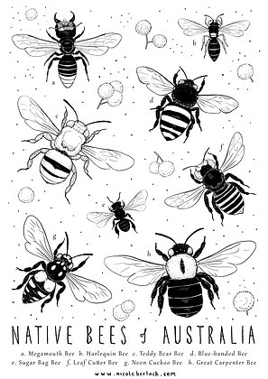COLOUR IN | BEES