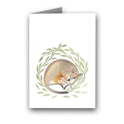 GREETING CARD | FAMILY WALLABY