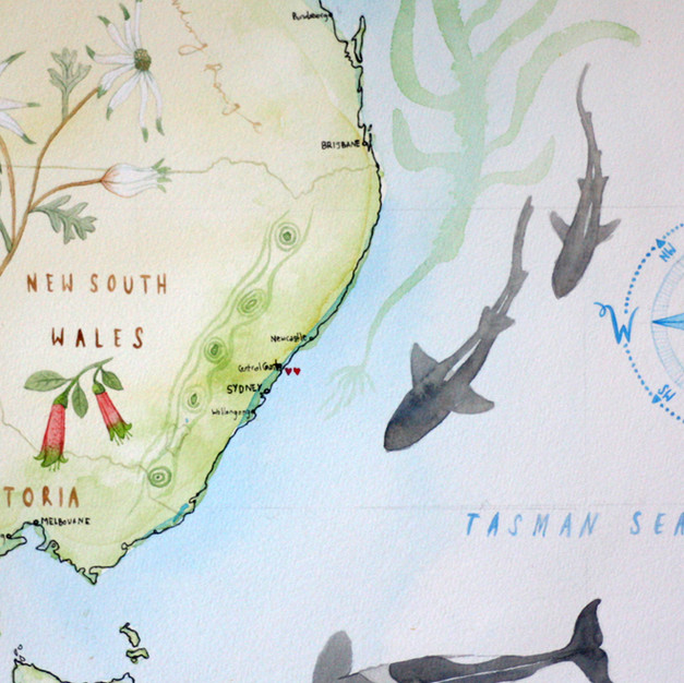 Nicole Berlach MAP AUS