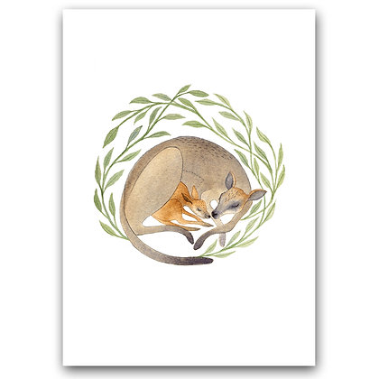 WH WALLABY FAMILY | A4 Art Print