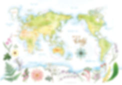 World Map, Australia, Watercolour, Botanical, painting, Nicole Berlach